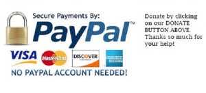 downloadPaypalrr